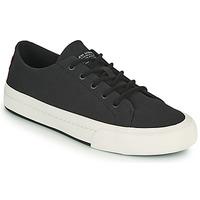 Schoenen Heren Lage sneakers Levi's SUMMIT LOW Zwart