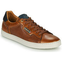 Schoenen Heren Lage sneakers Pantofola d'Oro TERMI UOMO LOW Brown