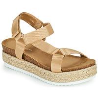 Schoenen Dames Sandalen / Open schoenen Steve Madden KODIAK Brown