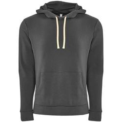 Textiel Heren Sweaters / Sweatshirts Next Level NX9303 Zwaar metaal