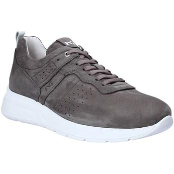 Schoenen Heren Lage sneakers Nero Giardini P900920U Gris