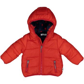 Textiel Kinderen Jacks / Blazers Melby 20Z0081 Rood