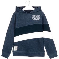 Textiel Kinderen Sweaters / Sweatshirts Losan 023-6002AL Blauw