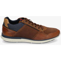 Schoenen Heren Lage sneakers Bullboxer 630-K2-6718A Brown
