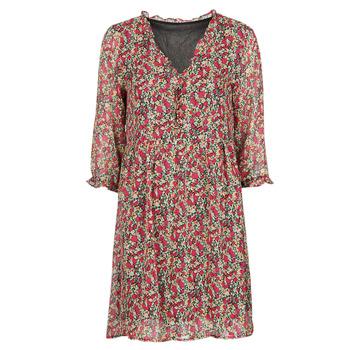 Textiel Dames Korte jurken Betty London  Rood / Multicolour