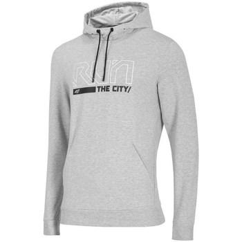 Textiel Heren Sweaters / Sweatshirts 4F BLM017 Gris