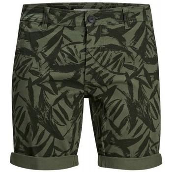 Textiel Heren Korte broeken / Bermuda's Produkt Takm chino 12171311 Groen