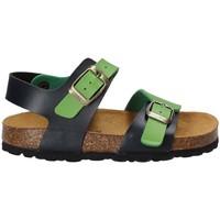 Schoenen Kinderen Sandalen / Open schoenen Bamboo BAM-14 Groen
