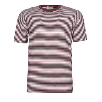 Textiel Heren T-shirts korte mouwen Scotch & Soda 160847 Rood / Wit