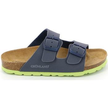 Schoenen Kinderen Leren slippers Grunland CB1537 Blauw