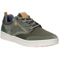 Schoenen Heren Lage sneakers Wrangler WM91001A Groen
