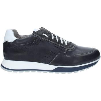 Schoenen Heren Lage sneakers Rogers 5065 Blauw