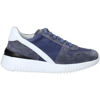 Schoenen Dames Lage sneakers Triver Flight 101-02C Blauw