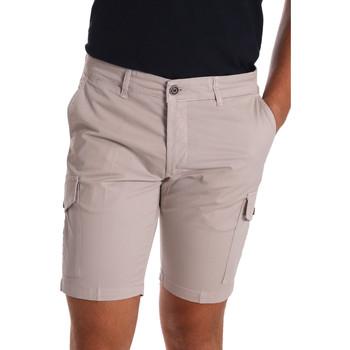 Textiel Heren Korte broeken / Bermuda's Sei3sei PZV130 7148 Beige