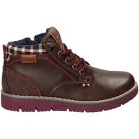 Schoenen Kinderen Laarzen Wrangler WJ17215 Bruin