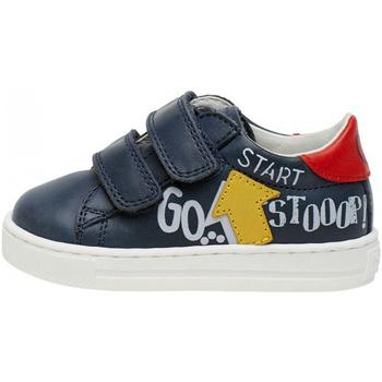 Schoenen Kinderen Lage sneakers Falcotto 2014629 01 Bleu