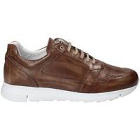 Schoenen Heren Lage sneakers Exton 332 Bruin