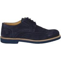 Schoenen Heren Derby Exton 9190 Blauw