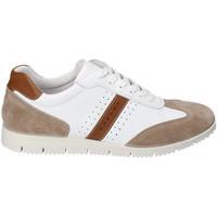 Schoenen Heren Lage sneakers IgI&CO 3121811 Wit