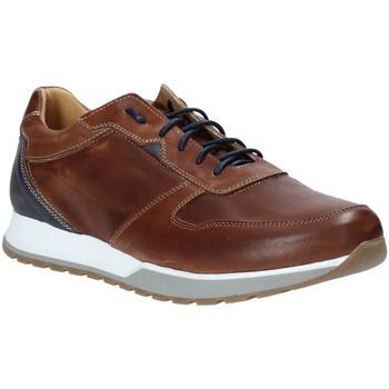 Schoenen Heren Lage sneakers Rogers 5068 Bruin