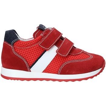 Schoenen Kinderen Lage sneakers Nero Giardini P923451M Rouge