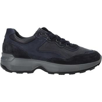 Schoenen Heren Lage sneakers IgI&CO 4114311 Bleu