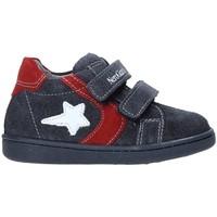 Schoenen Kinderen Lage sneakers Nero Giardini A919000M Gris