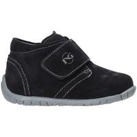 Schoenen Kinderen Lage sneakers Nero Giardini A919030M Bleu
