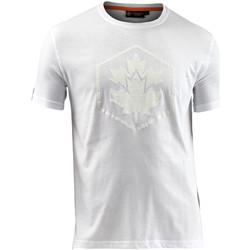 Textiel Heren T-shirts korte mouwen Lumberjack CM60343 005 514 Wit