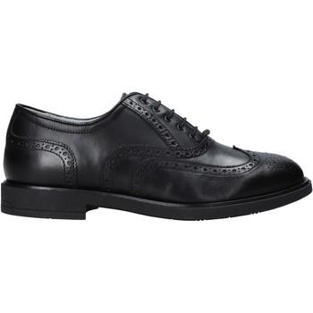Schoenen Heren Derby Nero Giardini E001453U Noir