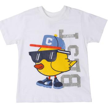 Textiel Kinderen T-shirts korte mouwen Chicco 09006918000000 Blanc