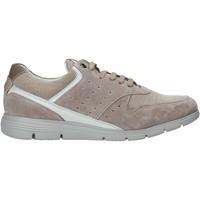 Schoenen Heren Lage sneakers Impronte IM01000A Beige