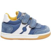 Schoenen Kinderen Lage sneakers Falcotto 2014666 01 Bleu