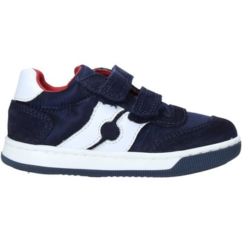 Schoenen Kinderen Sneakers Falcotto 2014666 01 Bleu