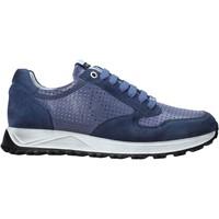Schoenen Heren Lage sneakers Exton 741 Blauw