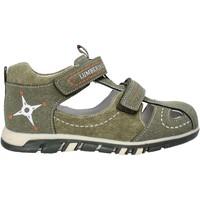 Schoenen Kinderen Sandalen / Open schoenen Lumberjack SB42106 004 P63 Vert