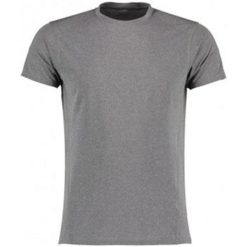 Textiel Heren T-shirts korte mouwen Gamegear KK939 Grijze Melange