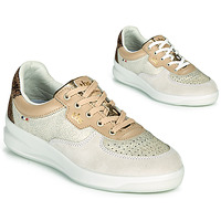 Schoenen Dames Lage sneakers TBS BETTYLI Beige / Brown