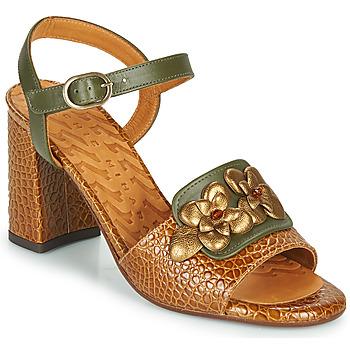 Schoenen Dames Sandalen / Open schoenen Chie Mihara FADIMA Brown