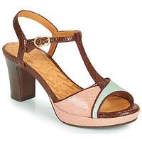 Schoenen Dames Sandalen / Open schoenen Chie Mihara NATI Brown / Roze / Groen