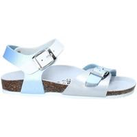 Schoenen Kinderen Sandalen / Open schoenen Gold Star 8846D Blauw