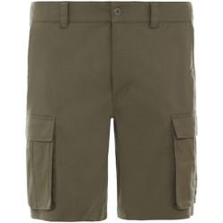 Textiel Heren Korte broeken / Bermuda's The North Face NF0A4CAL7D61 Vert