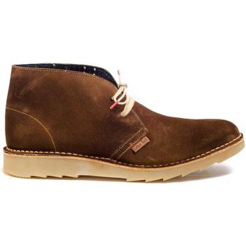 Schoenen Heren Laarzen Colour Feet CLARK KIM Brown