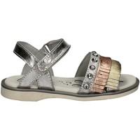 Schoenen Meisjes Sandalen / Open schoenen Chicco 01057559 Grijs