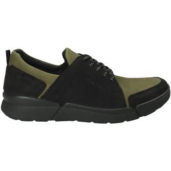 Schoenen Heren Lage sneakers IgI&CO 2126322 Groen