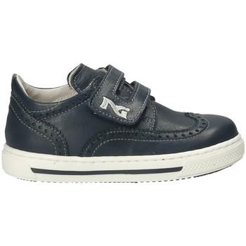 Schoenen Kinderen Lage sneakers Nero Giardini P823110M Bleu