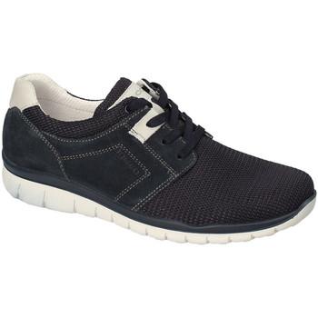 Schoenen Heren Lage sneakers IgI&CO 3118300 Blauw