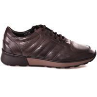 Schoenen Heren Lage sneakers Soldini 20630 2 Bruin