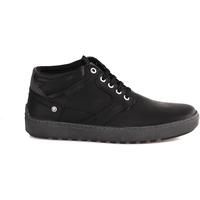 Schoenen Heren Laarzen Wrangler WM182088 Zwart