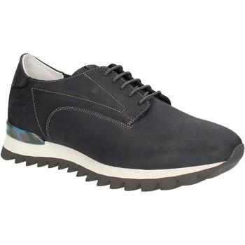 Schoenen Heren Lage sneakers Alberto Guardiani SU744559A Bleu